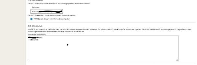2021-08-09 FRITZ Box 7490 DNS Rebind Schutz